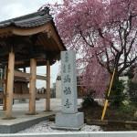 鶴ヶ島市の共同墓地に墓石建立予定の現地調査に行きました。
