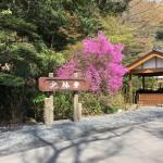 大里郡寄居町桜沢の長福寺と末野の小林禅寺に石塔の戒名彫刻に行きました。