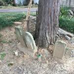 比企郡小川町にて、墓地調査に行ってきました。