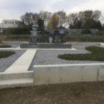 深谷市の下手計の個人墓地の玉竜の状態を確認することができました。